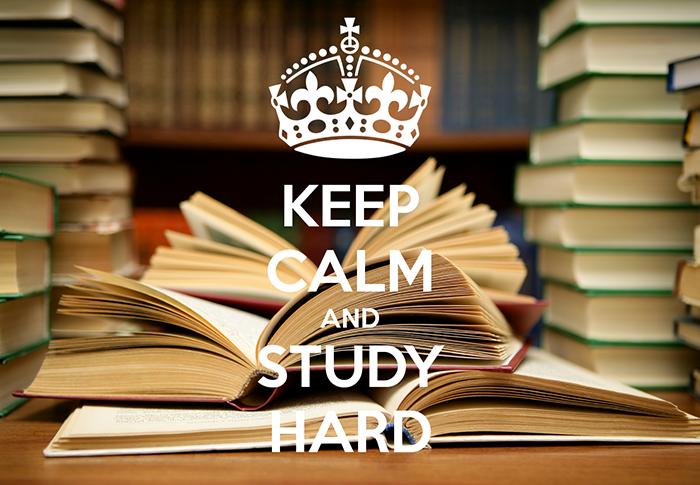 studiare tanto per imparare la seo